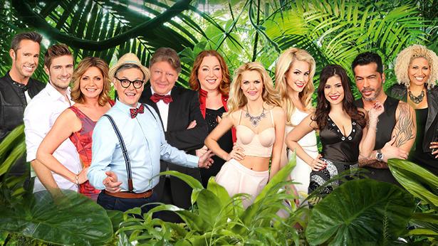 Diese elf Stars ziehen ins Dschungelcamp 2015.