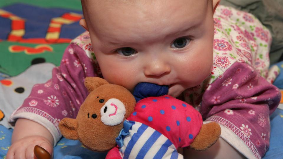 Da Babys auch häufiger an ihren Plüschtieren nuckeln ist vor allem bei Material und Qualität Vorsicht geboten.