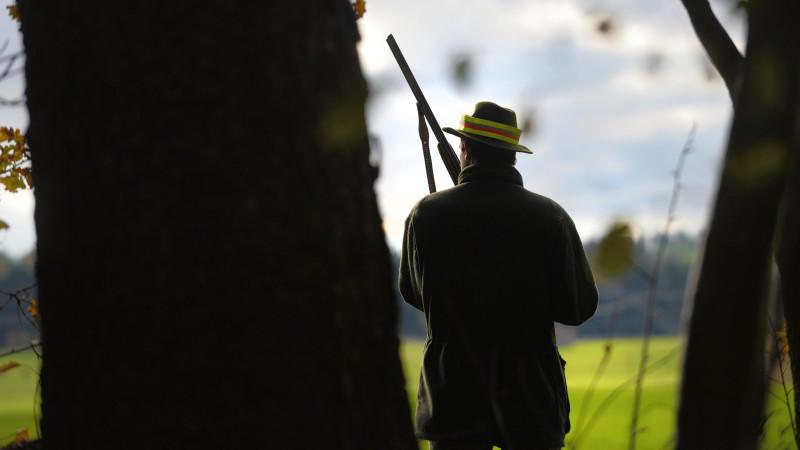 Ein Jäger mit Gewehr steht am Waldrand (Symbolbild)