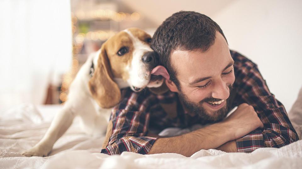 Hund und Herrchen