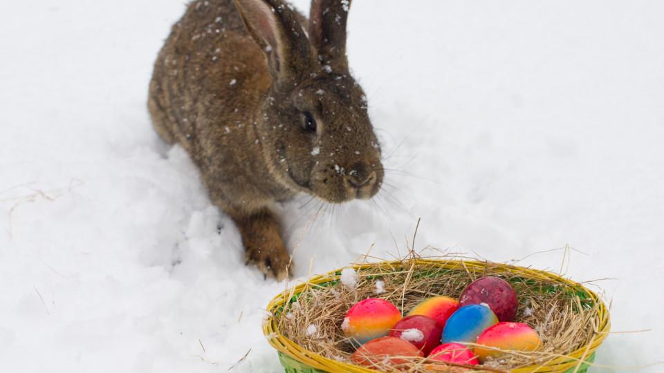 Weiße Ostern in Brandenburg. Der Märzwinter 2013 und der frühe Ostertermin haben das möglich gemacht.