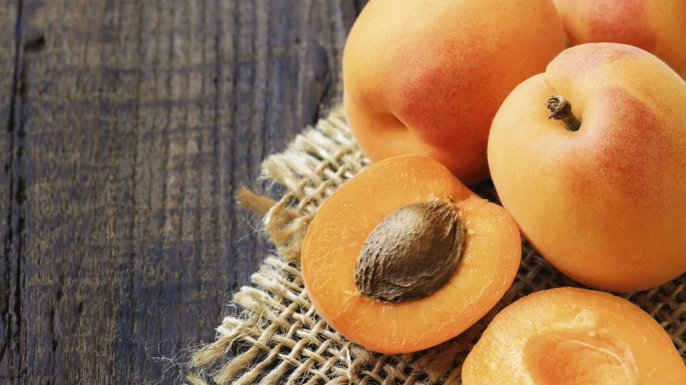 Aprikosen: Gesund wie keine andere Frucht