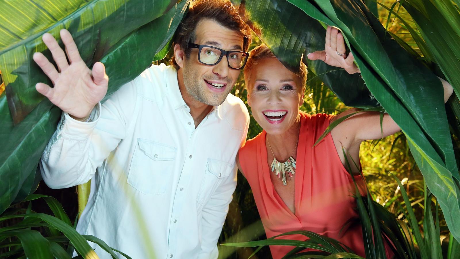 """Das Moderatorenduo Daniel Hartwich und Sonja Zietlow präsentiert ab dem 13. Januar 2017 die neue Staffel von """"Ich bin ein Star - Holt mich hier raus!"""""""