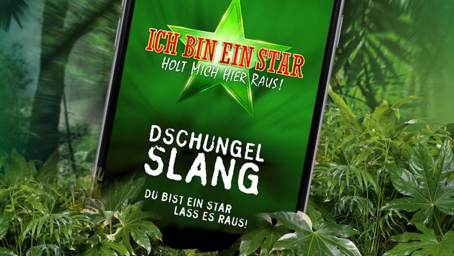 Dschungelcamp App - Du bist ein Star? Dann lass es raus!