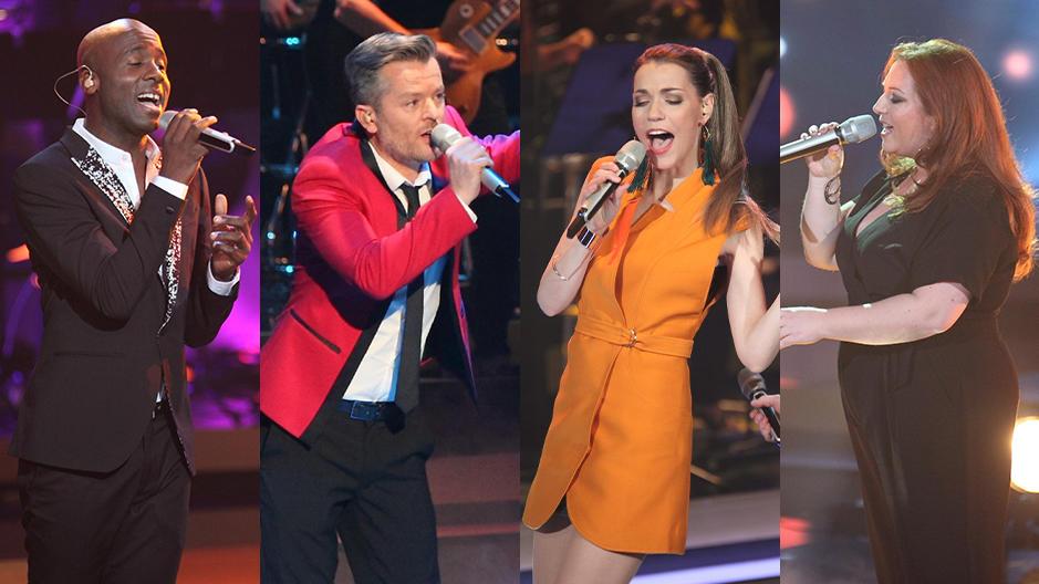 Dave Davis, André Dietz, Annett Möller und Rebecca Siemoneit-Barum singen im Finale Duette.