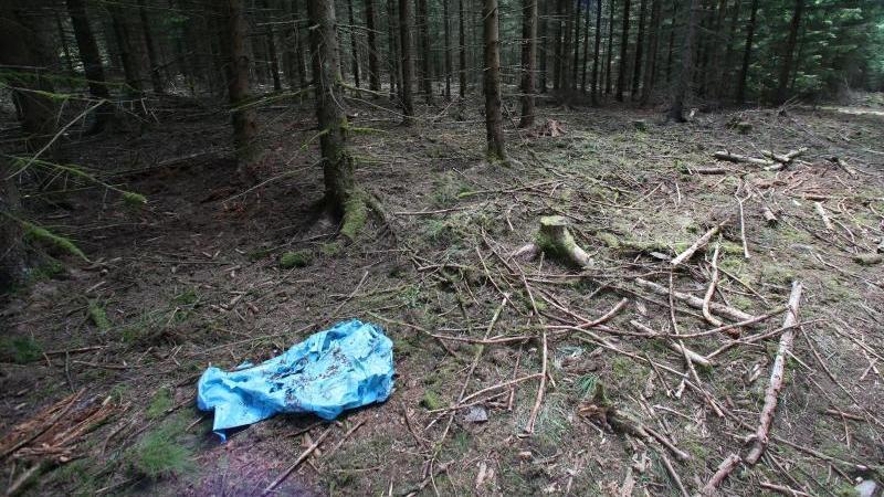 In diesem Waldstück bei Rodacherbrunn in Thüringen fand ein Pilzsammler das Skelett der vermissten Peggy. Foto: Daniel Karmann/Archiv