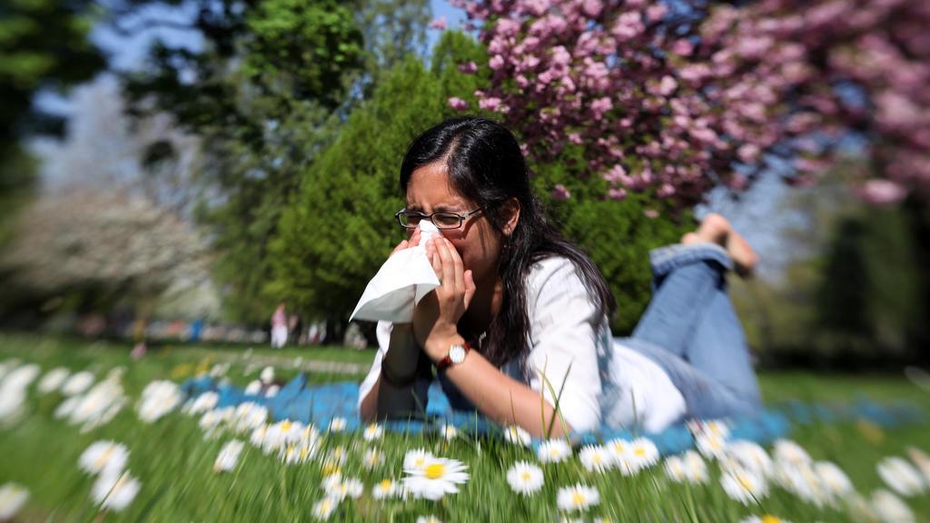 ARCHIV - ILLUSTRATION - Eine junge Frau liegt am 24.04.2011 auf einer Wiese in Hamburg und niest in ein Papiertaschentuch (Aufnahme mit Spezialobjektiv). Der Husten und das Schniefen werden von Jahr zu Jahr schlimmer: Allergiker spüren bereits heute