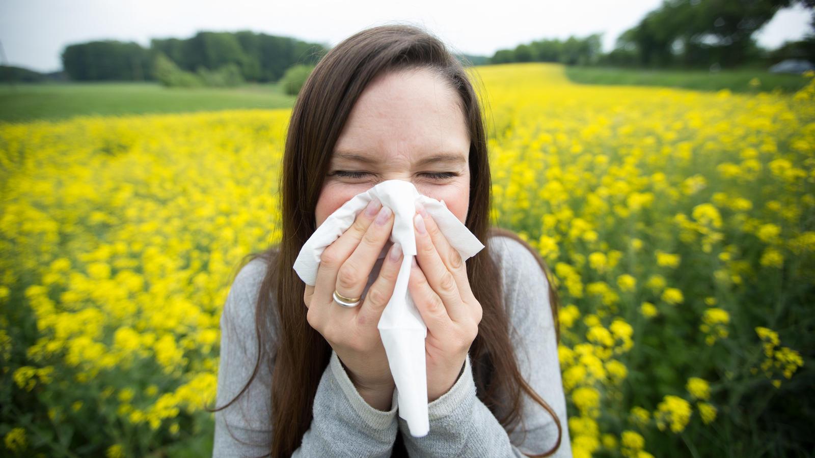 Wenn die Pollen fliegen, leiden viele an Heuschnupfen.