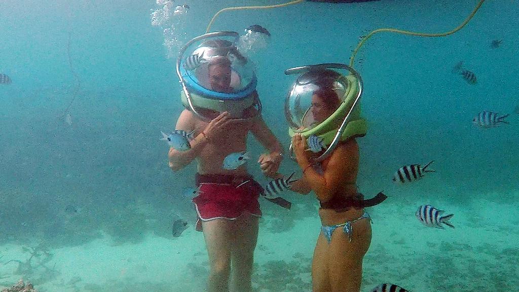 Johannes und Jessica lernen bei einem Unterwasserspazierung die bunte Vielfalt des Ozeans kennen.
