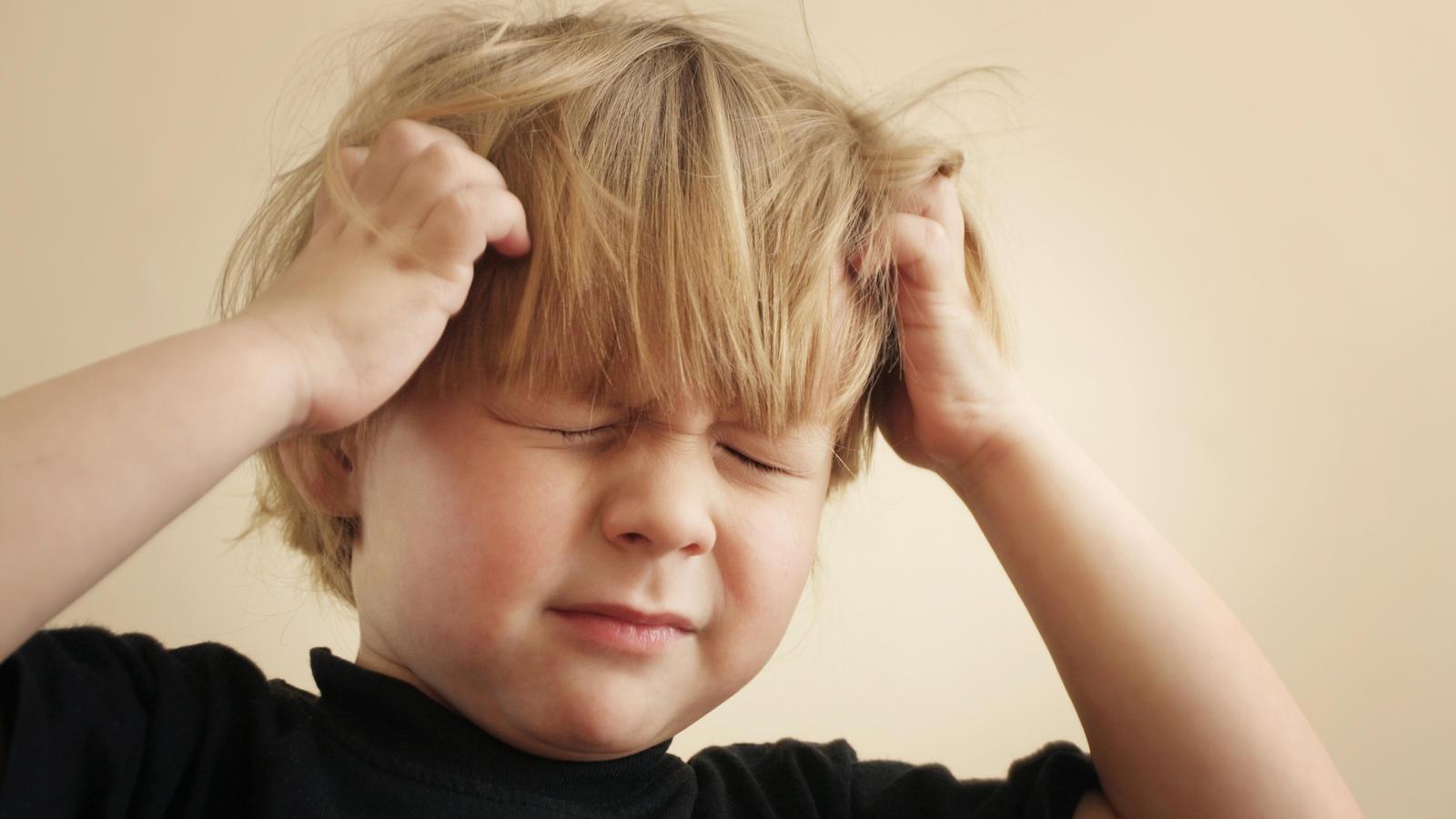 Laut eines Senftenberger Kinderarztes treten Läuse und Krätze aktuell wieder öfter auf.
