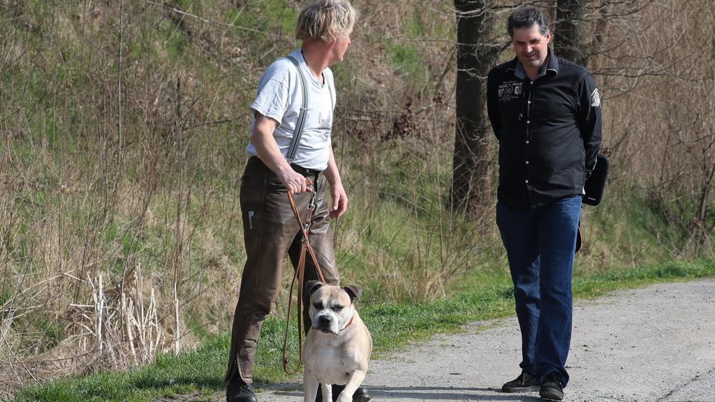 Tierheim Hannover: Kampfhund Chico ohne Maulkorb